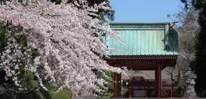 Head Temple Taisekiji walkway
