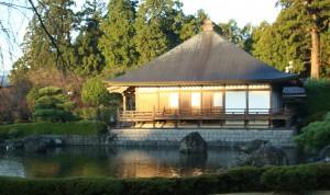 Buddhist Temple header Feb 28